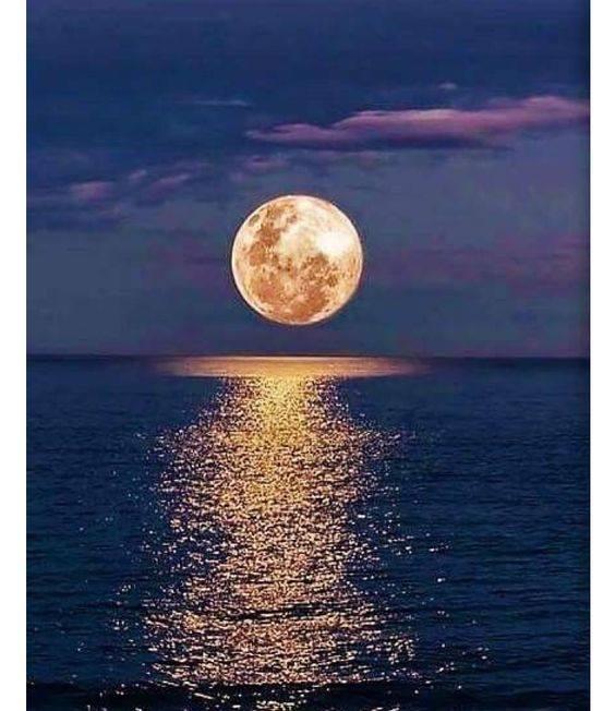 Just Hours Till Wesak Full Flower Full Moon Activations