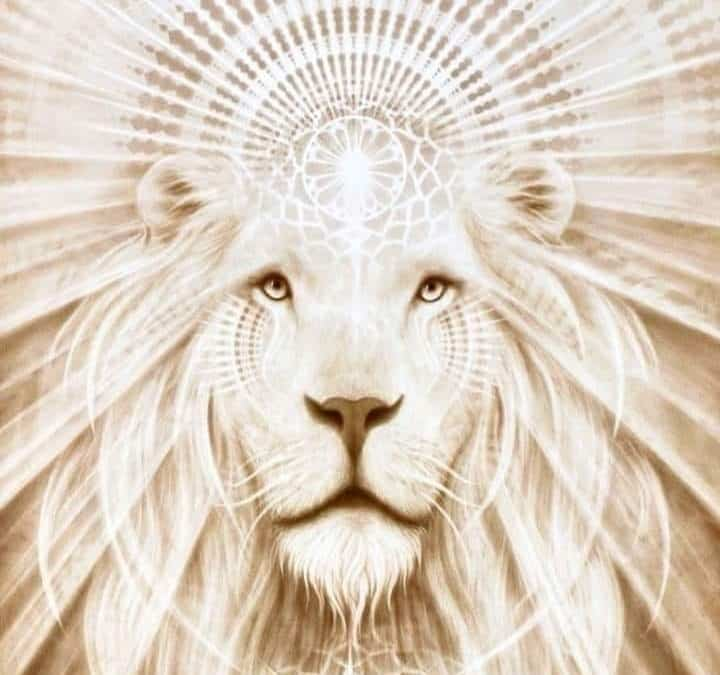 Lions Gate Portal Closes